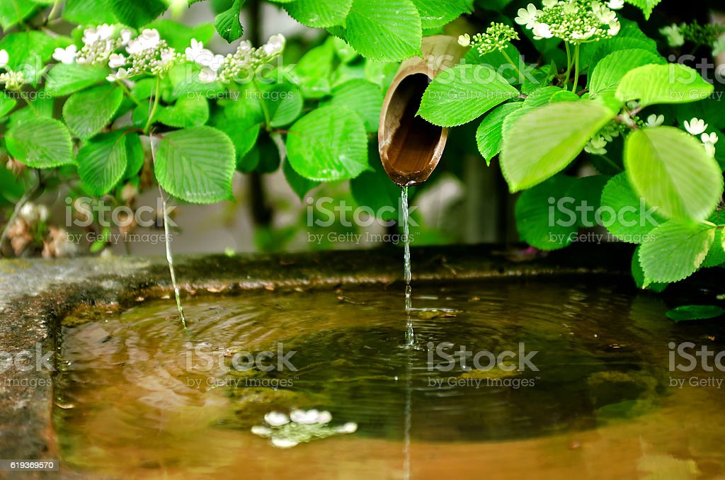 Bamboo water fountain stock photo