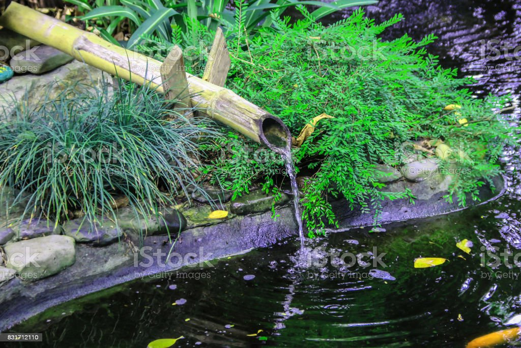 Bamboo water pipe in the garden stock photo