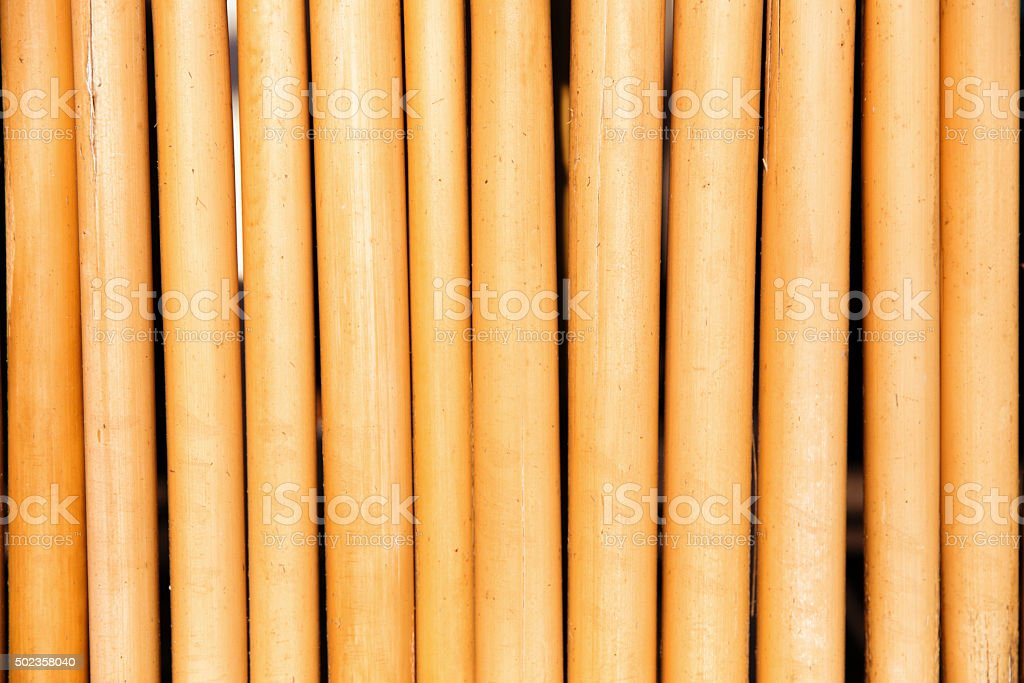 Bamboo wood background stock photo