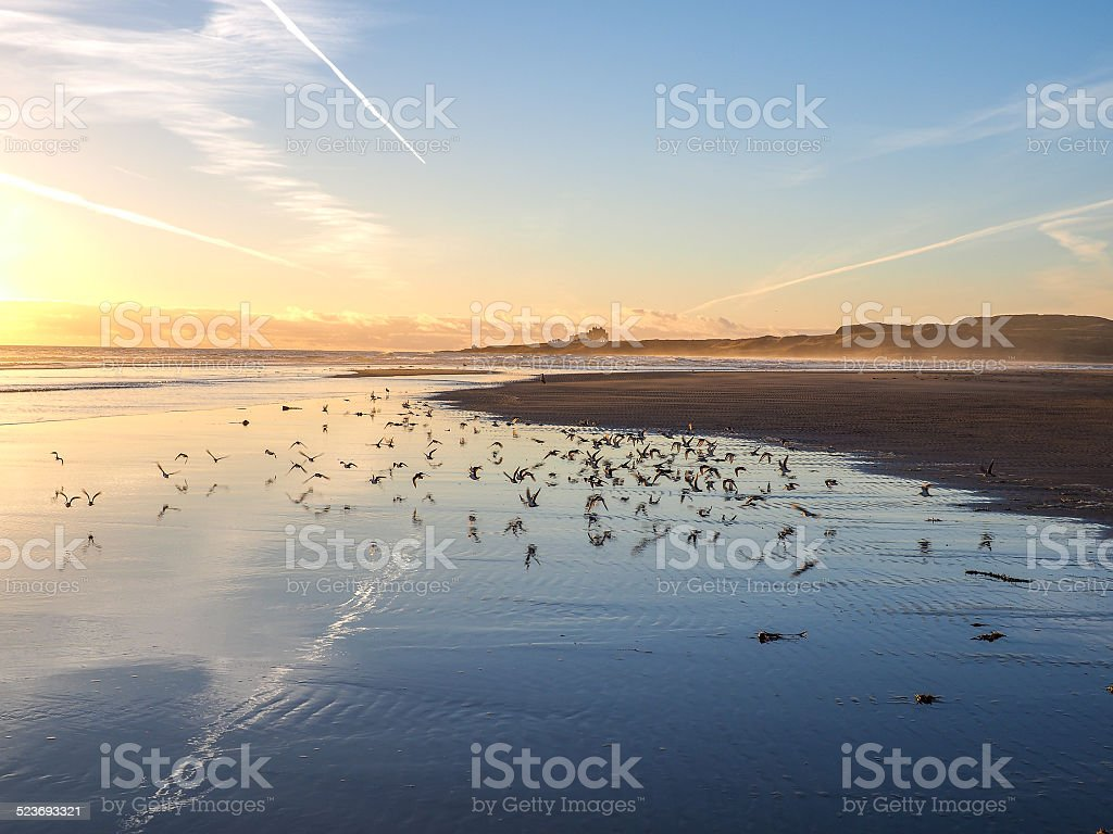 Bamburgh Castle in Northumberland, England. The Farne Islands ar stock photo