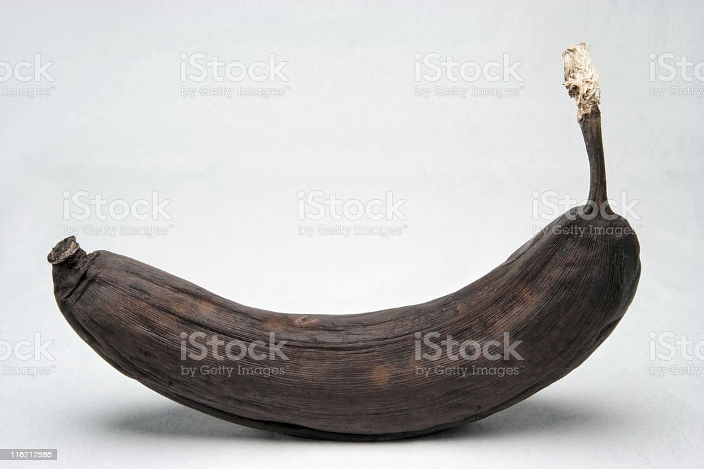Banana Bread Bound royalty-free stock photo