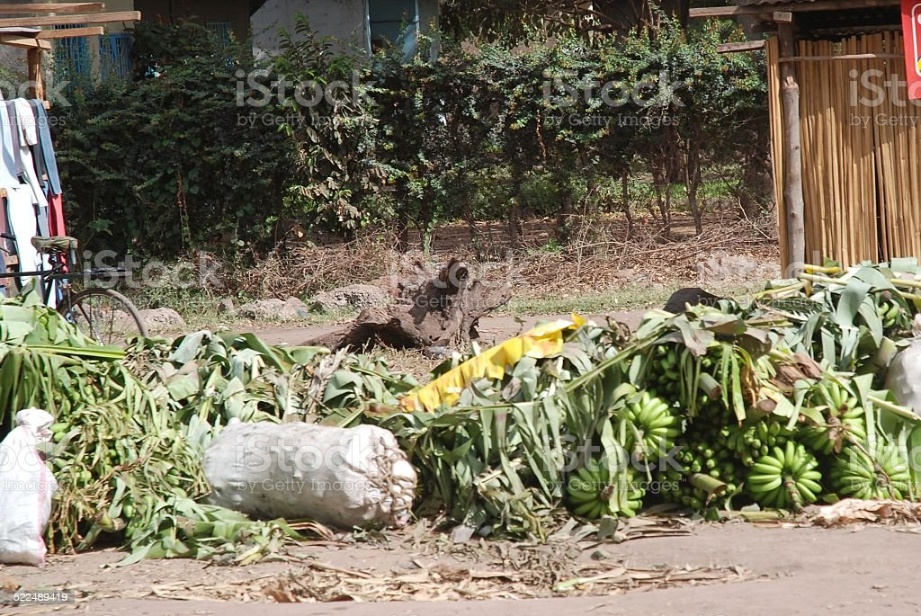 Banana Bunches at Side of Road royalty-free stock photo
