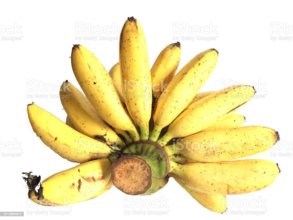 banana in isolate white background stock photo