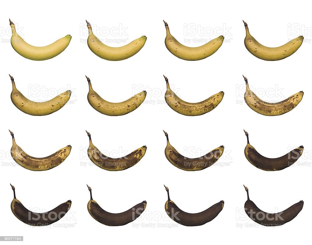Banana in progress stock photo