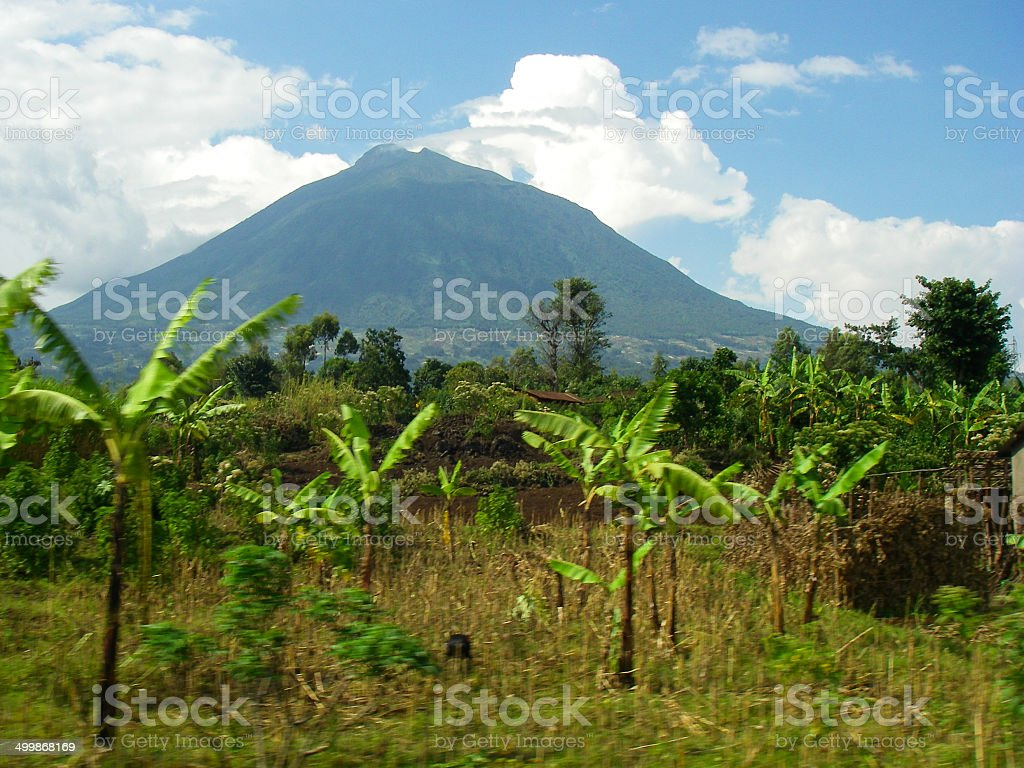 Bananas and Beans and farmers fields with Muhabura Volcano Rwanda stock photo