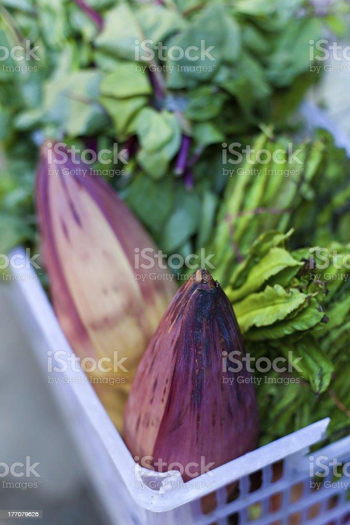 Bananas flowers royalty-free stock photo