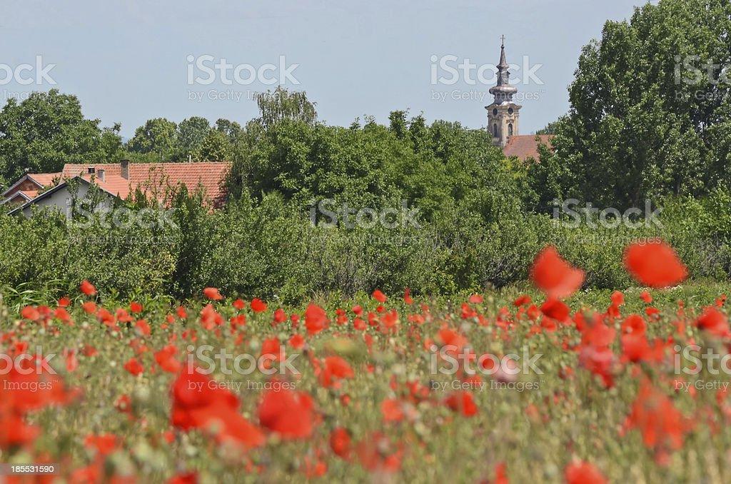 Banatski Karlovac royalty-free stock photo