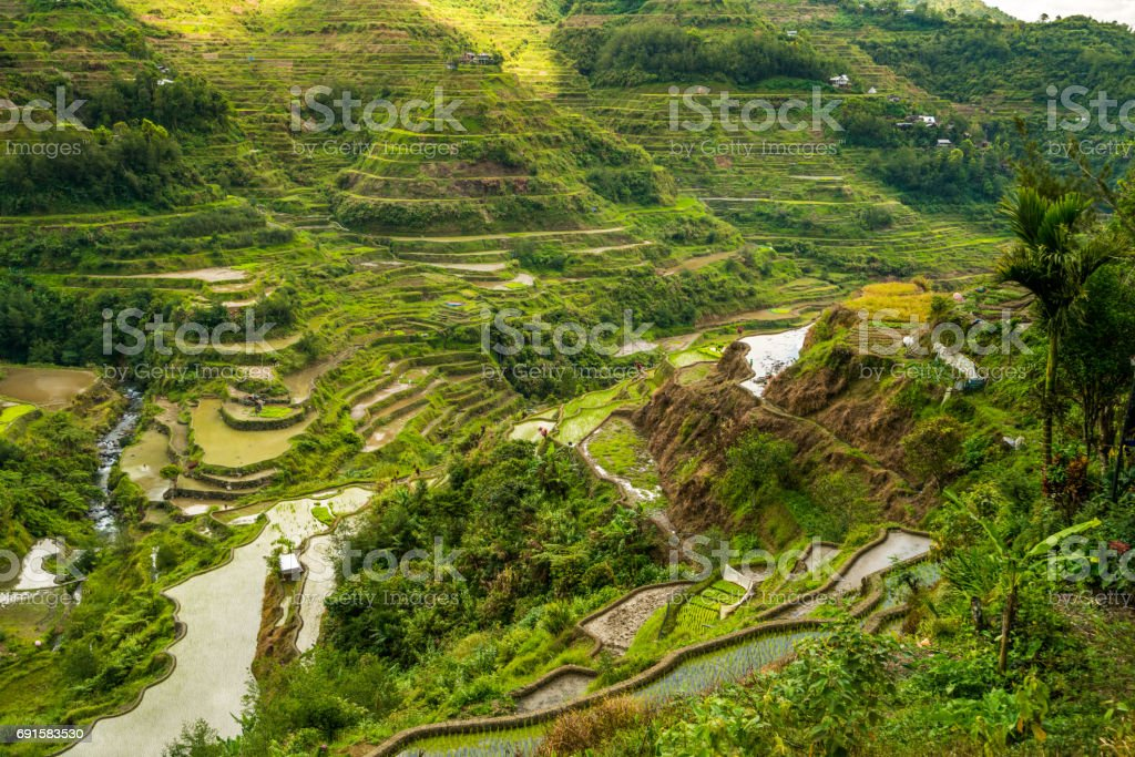Banaue Rice Terraces, Philippines stock photo