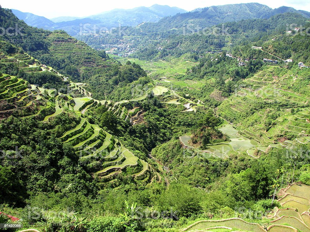 Banaue Rice Terraces royalty-free stock photo