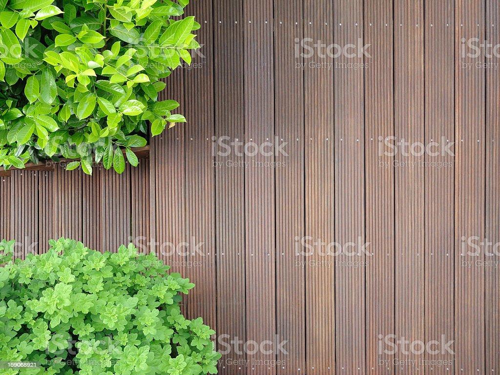 bangkirai terrace royalty-free stock photo
