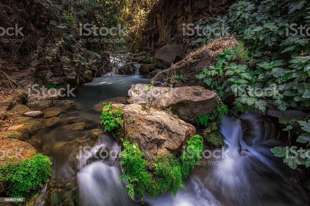 Banias river flow stock photo