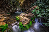 Banias river flow