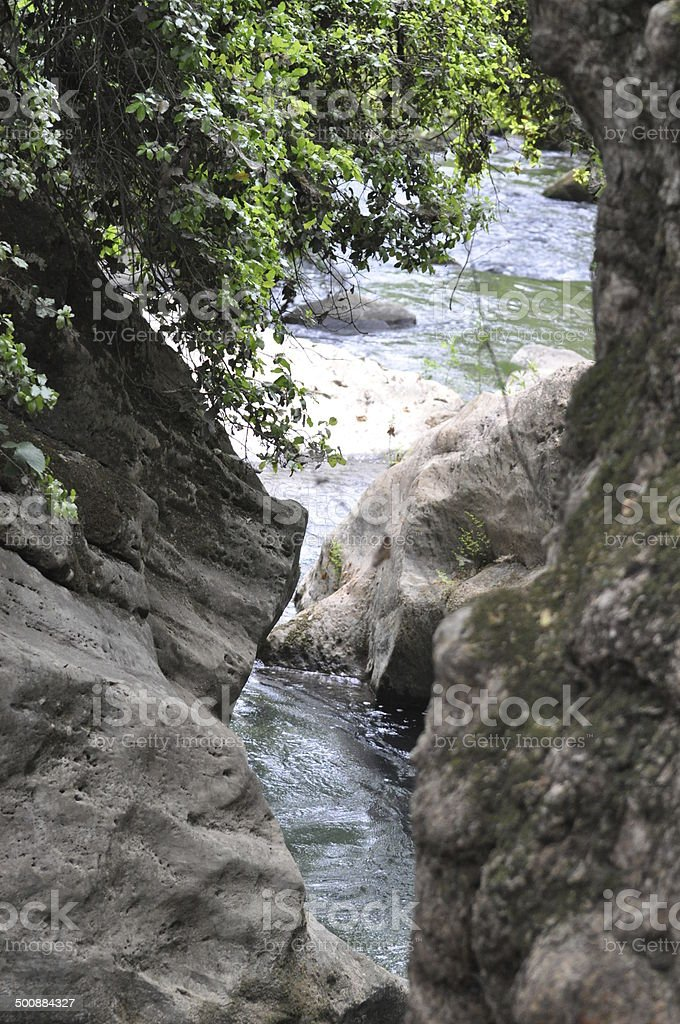 Banias Springs stock photo