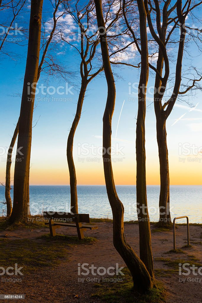 Bank am Ostseeufer - Bench on the Baltic shore stock photo