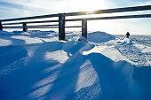 Bank of snow