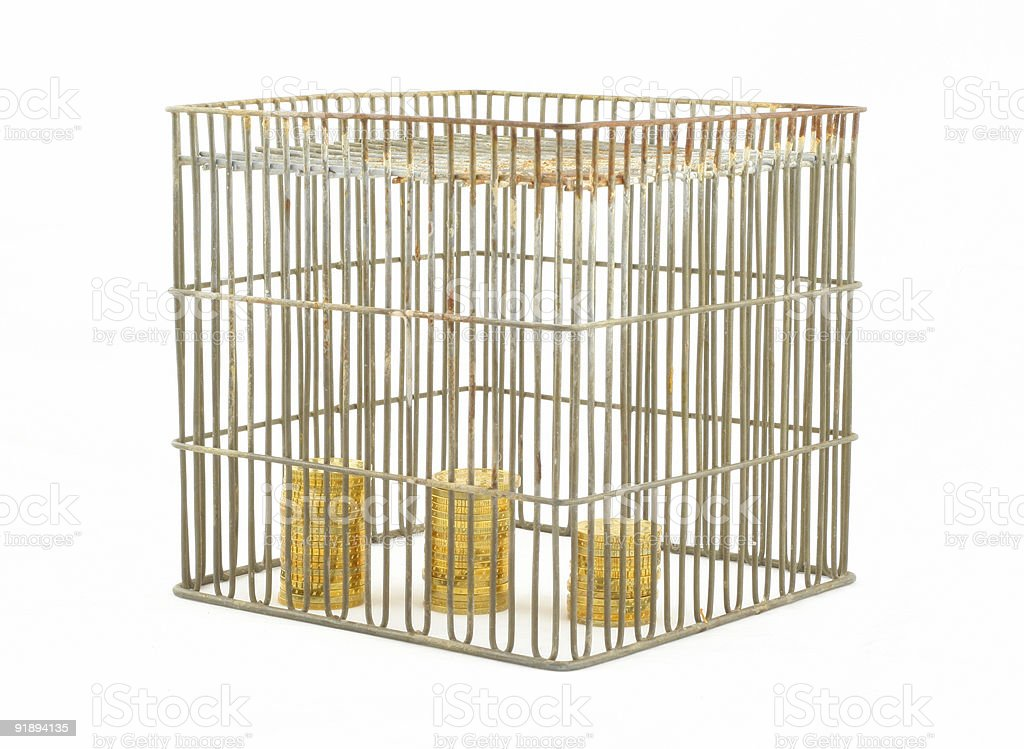banking - coins in cage on white #2 royalty-free stock photo