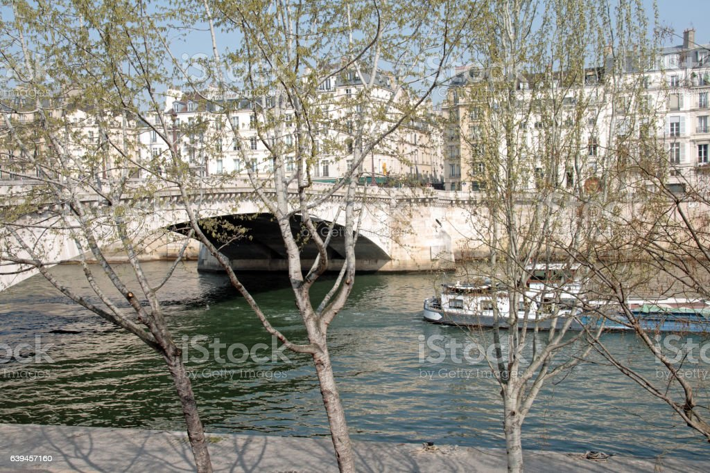 Banks of the Seine, trees and barges (Paris France) stock photo