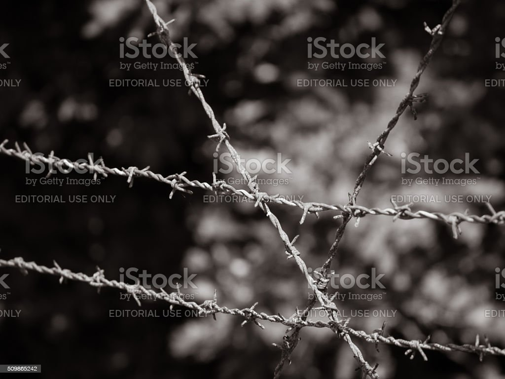 Barb wire fence at former Nazi transit camp Westerbork stock photo