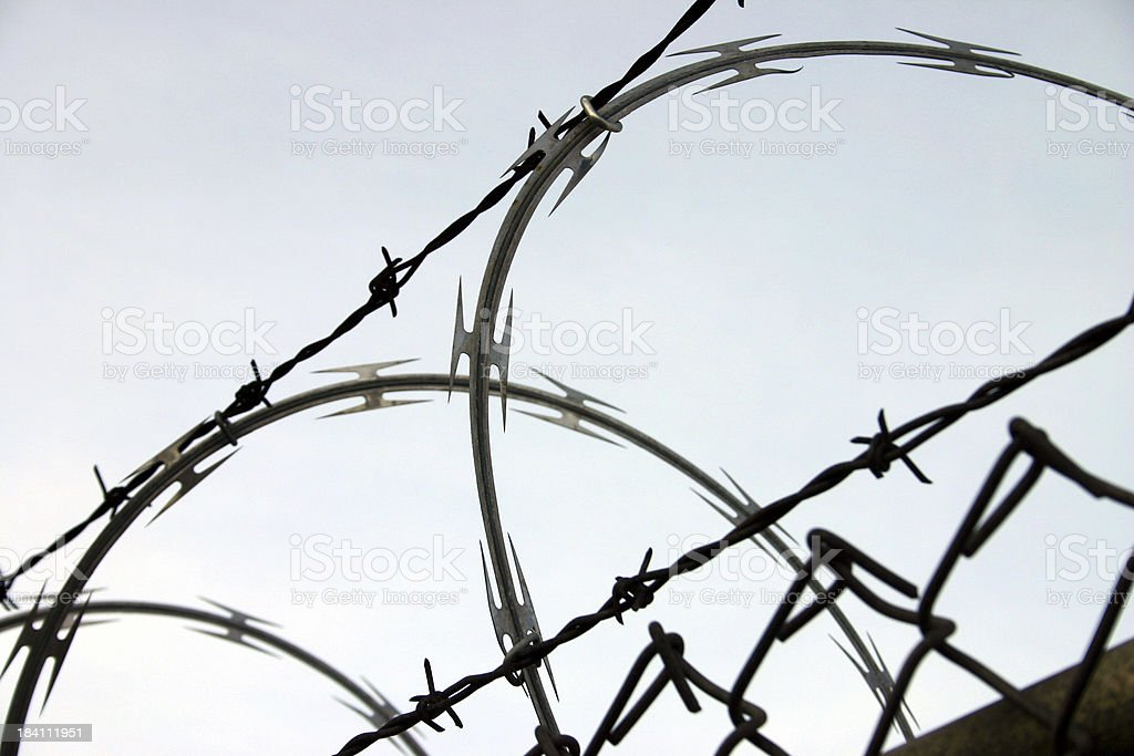 barb wire stock photo
