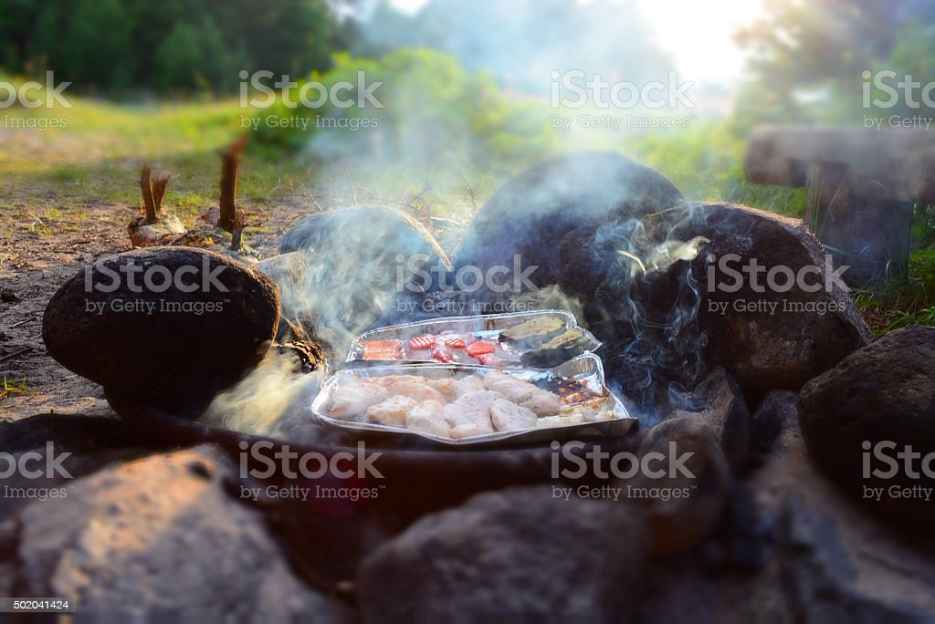 Barbecue in the wild royalty-free stock photo