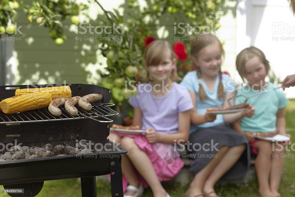Barbecue party royalty-free stock photo