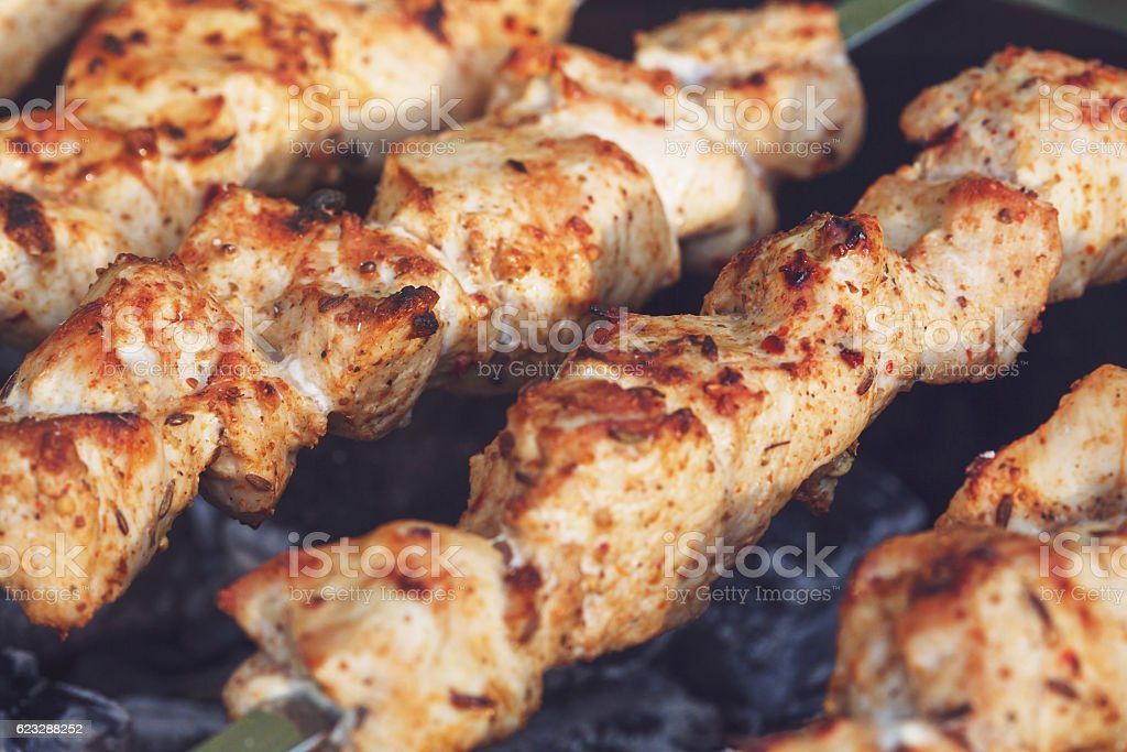 Barbecue skewers with meat on the brazier. Chicken shish kebab stock photo