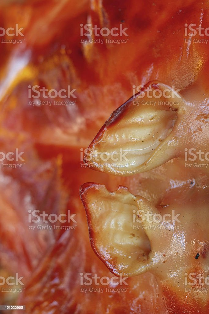 Barbecued suckling pig royalty-free stock photo