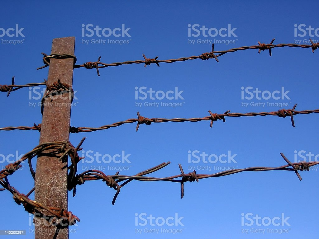 Barbed fence royalty-free stock photo