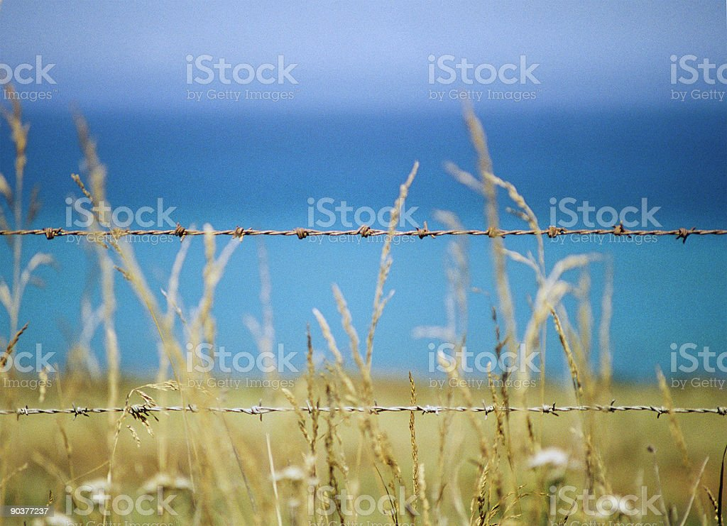 Barbed Ocean royalty-free stock photo