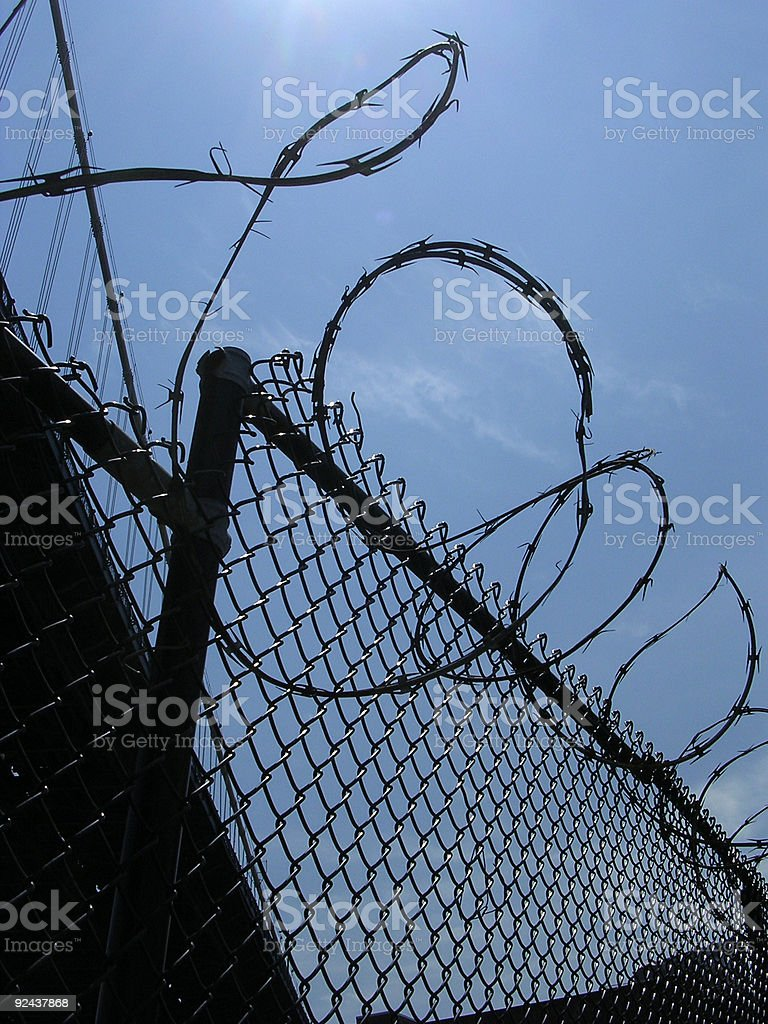 Barbed Wire 1 royalty-free stock photo