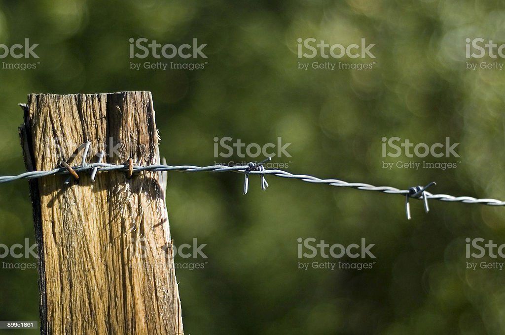 Barbed wire 2 stock photo