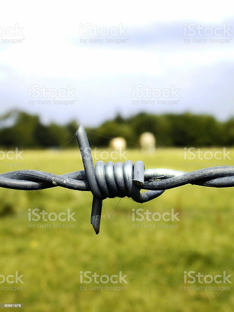 Barbed wire 2 royalty-free stock photo