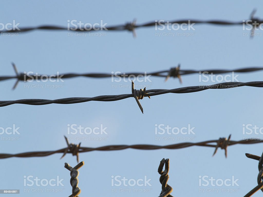 Barbed Wire against blue sky royalty-free stock photo