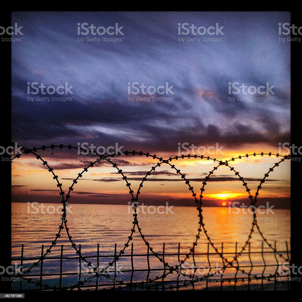 Barbed Wire and Metal Fence stock photo