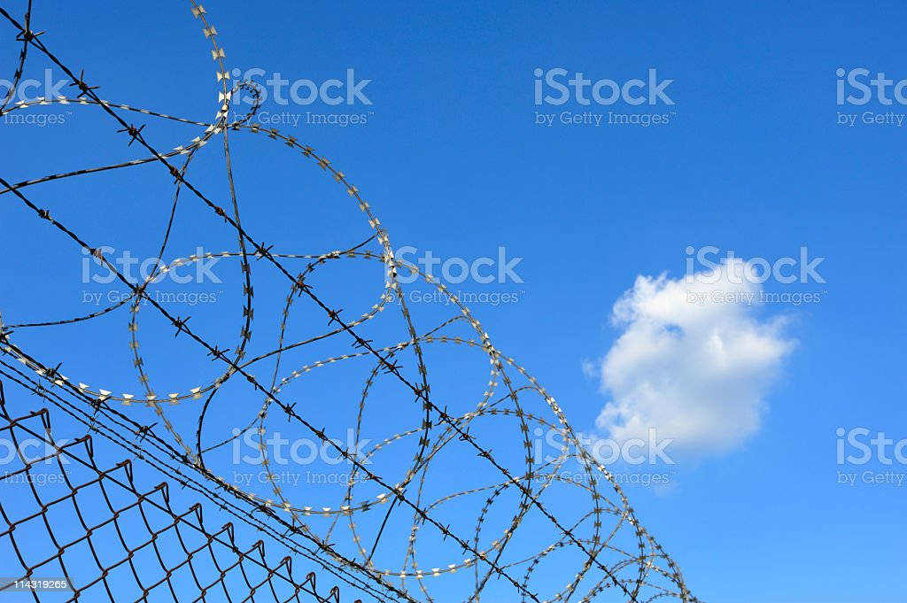 Barbed Wire and Sky royalty-free stock photo