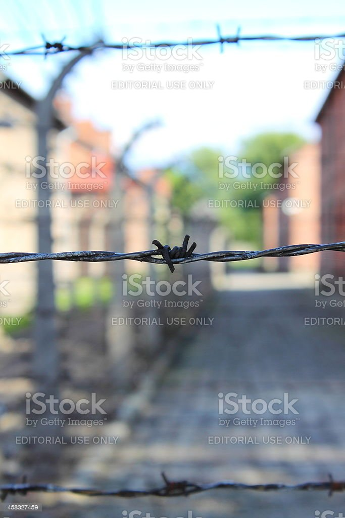 Barbed wire at Auschwitz royalty-free stock photo