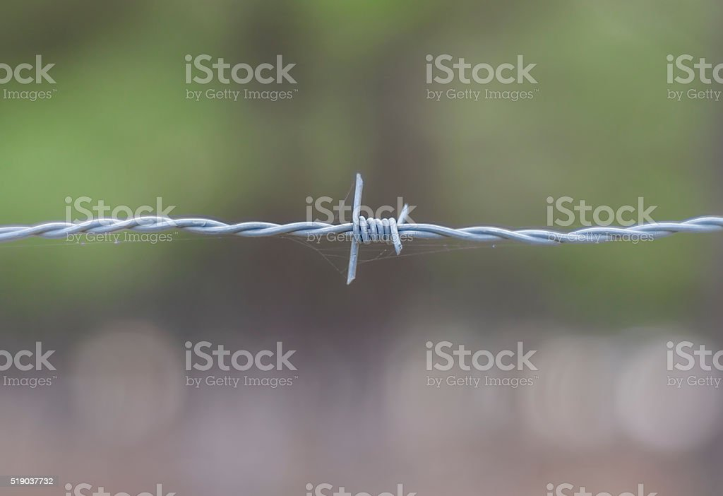 Barbed Wire close-up stock photo