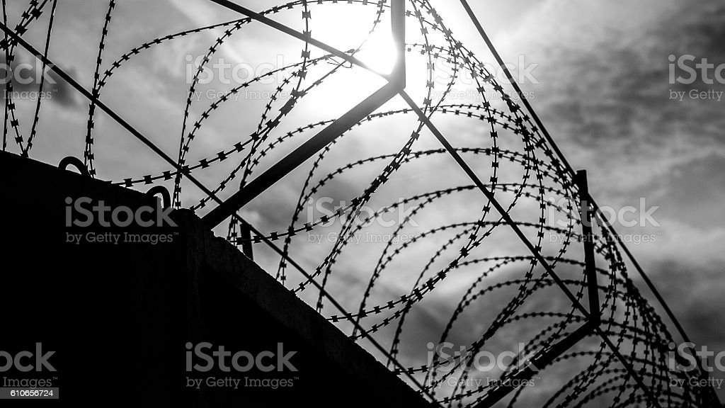 Barbed wire, danger. Prison stock photo