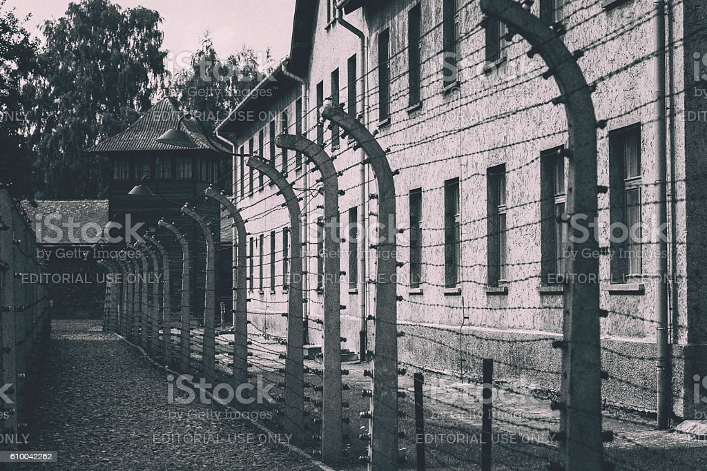 Barbed wire fence at Auschwitz stock photo