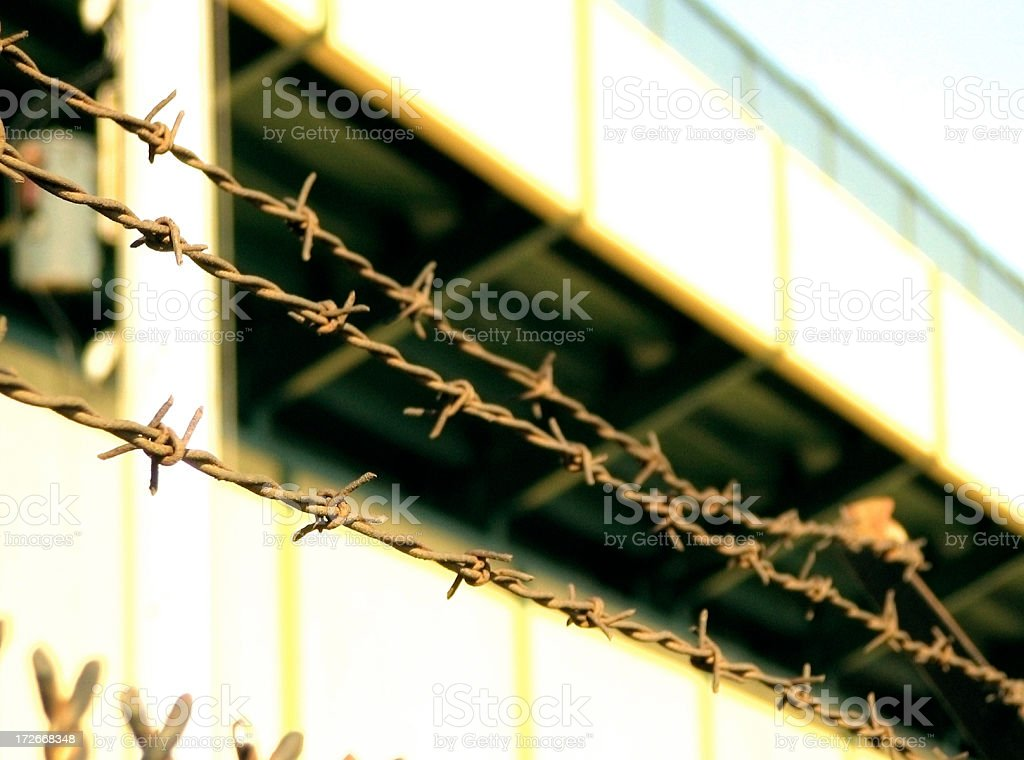 Barbed Wire Fence - Jail royalty-free stock photo