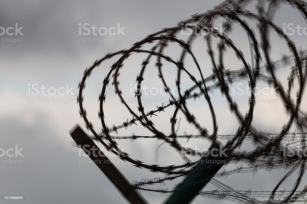 Barbed wire fence of a restricted area stock photo