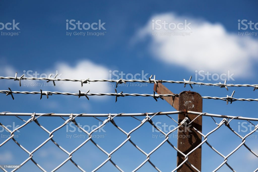 Barbed wire fence. royalty-free stock photo