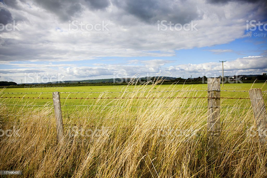 barbed wire fence royalty-free stock photo