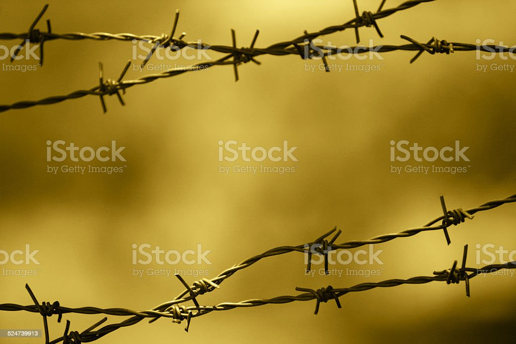 Barbed wire fence with out of focus background stock photo