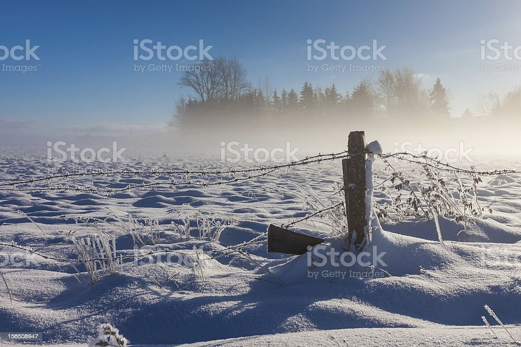 Barbed wire fence with snow covered ground royalty-free stock photo