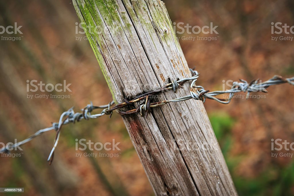 Barbed Wire Fencing with Post Fulle Frame Angled View stock photo