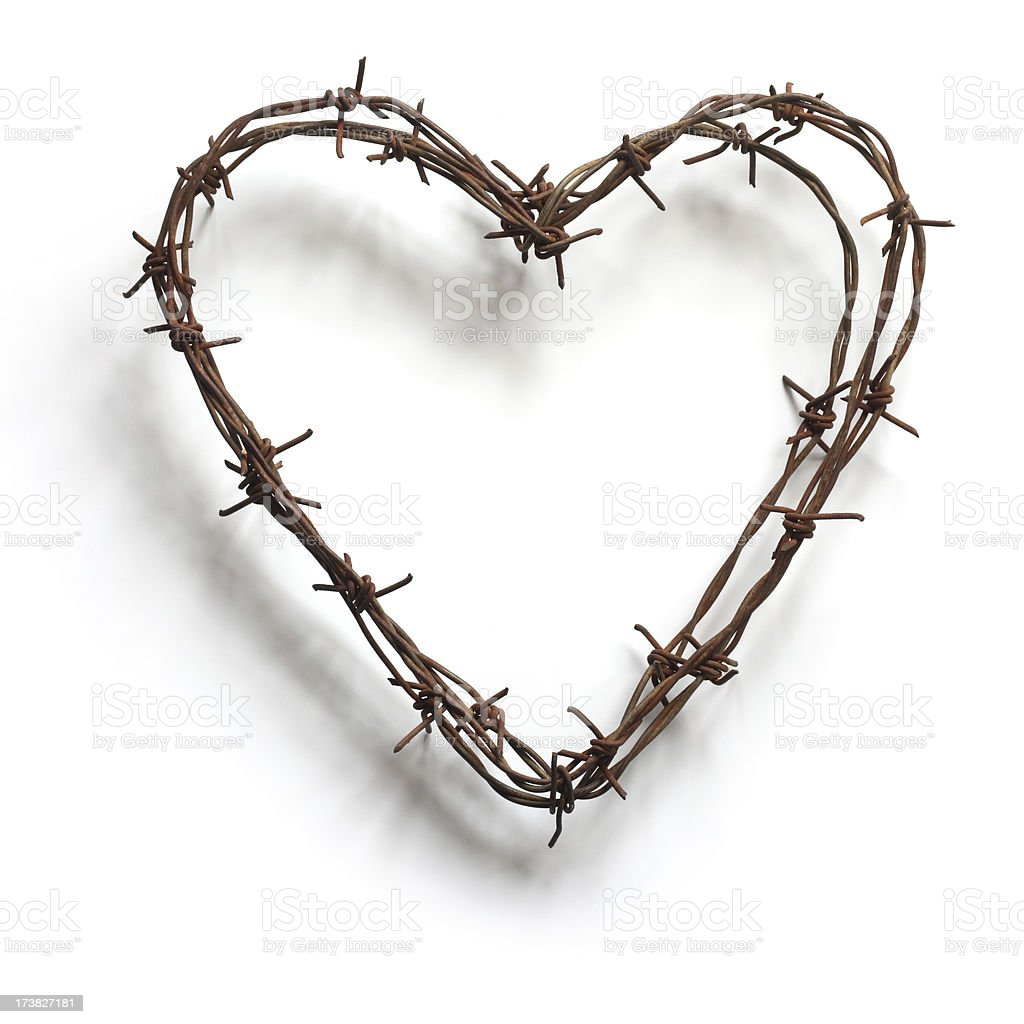 barbed wire heart on white stock photo