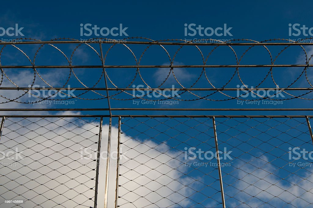 Barbed wire in front of blue sky stock photo