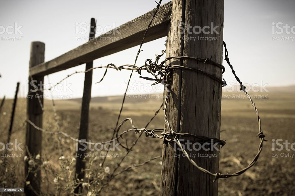 Barbed Wire on a Fence - Bleach Bypass stock photo