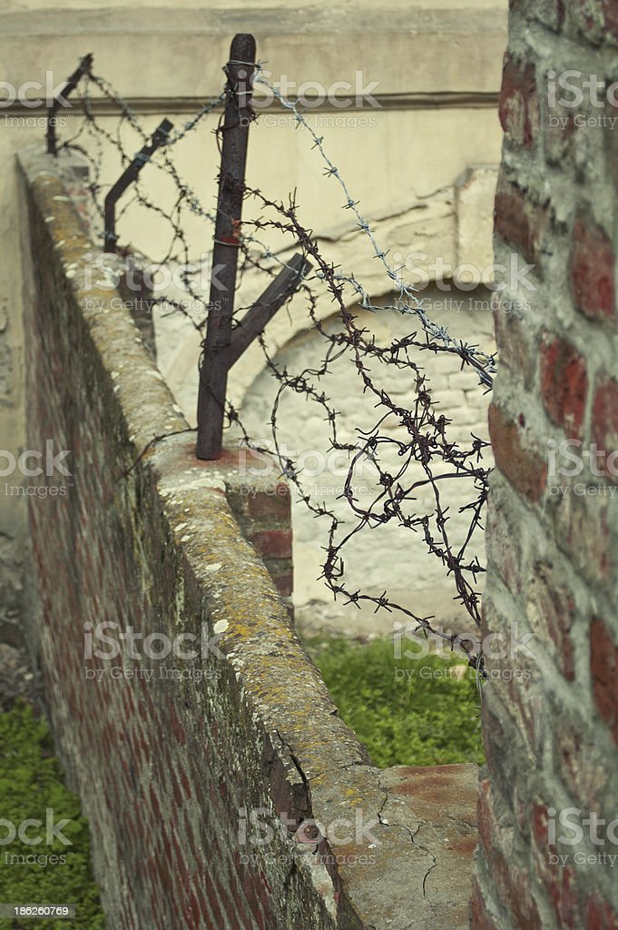 Barbed wire on a wall. royalty-free stock photo